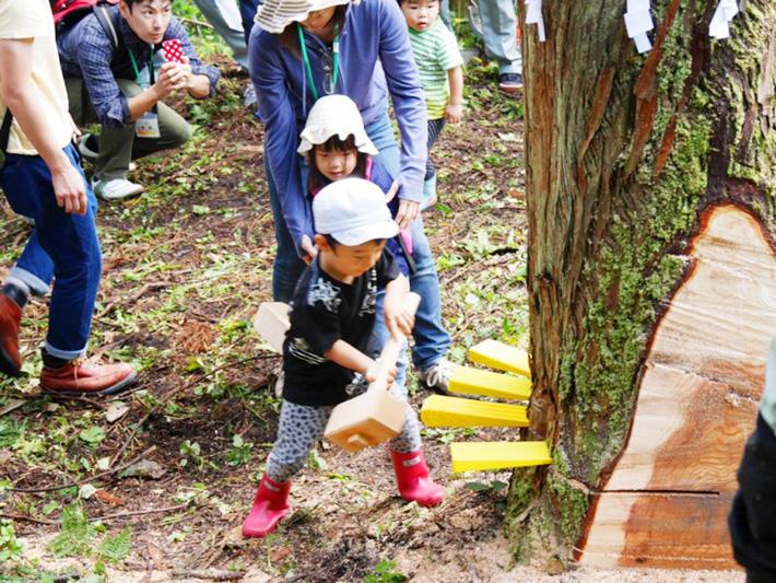 春の大木伐採バスツアー